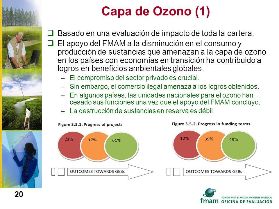 Capa de Ozono (1) Basado en una evaluación de impacto de toda la cartera.