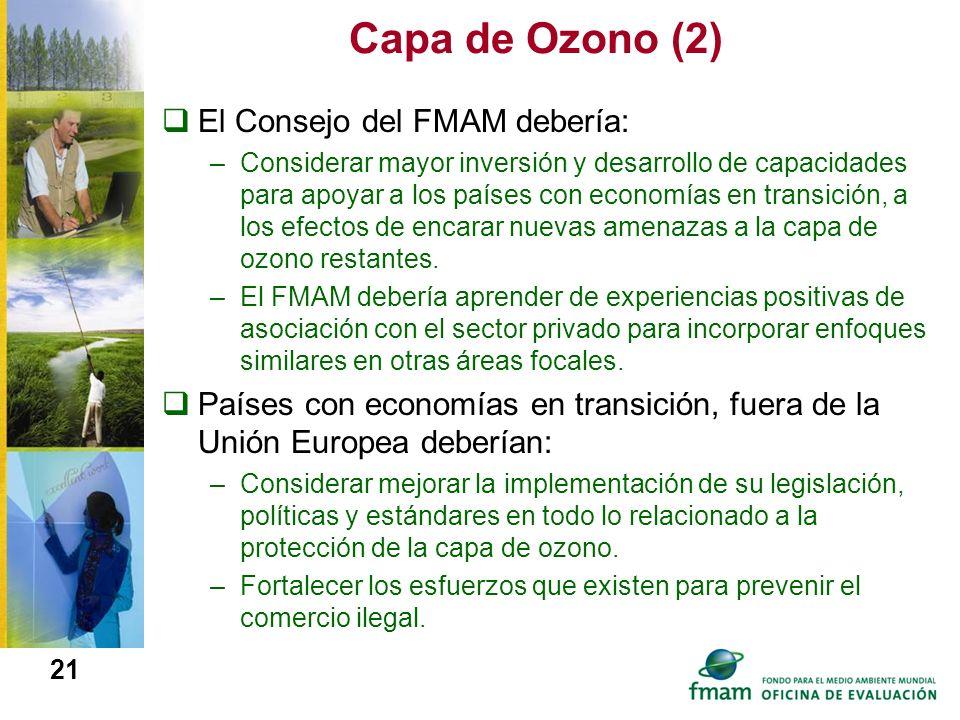 Capa de Ozono (2) El Consejo del FMAM debería: