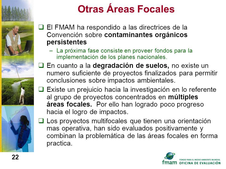 Otras Áreas Focales El FMAM ha respondido a las directrices de la Convención sobre contaminantes orgánicos persistentes.