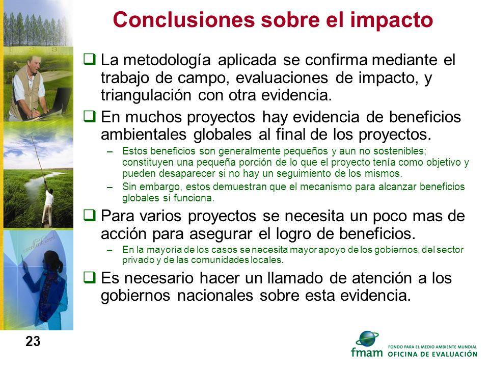 Conclusiones sobre el impacto