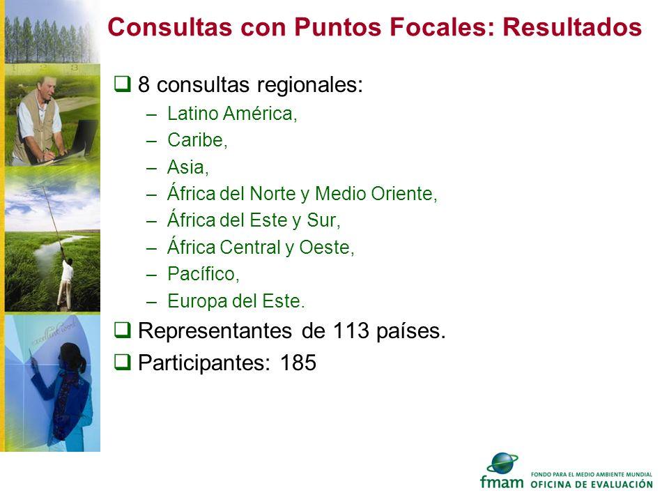 Consultas con Puntos Focales: Resultados