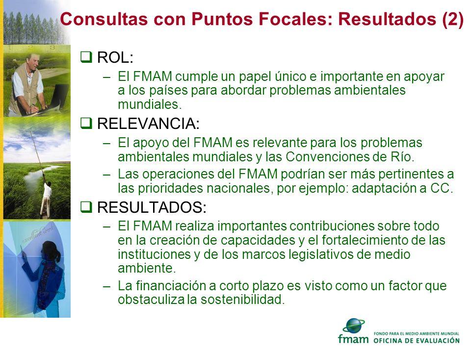 Consultas con Puntos Focales: Resultados (2)