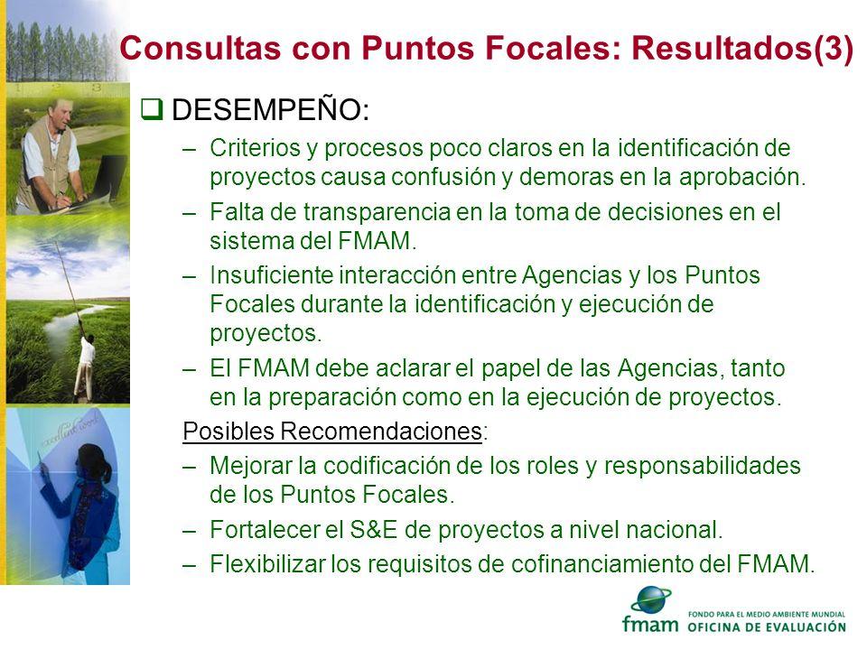 Consultas con Puntos Focales: Resultados(3)