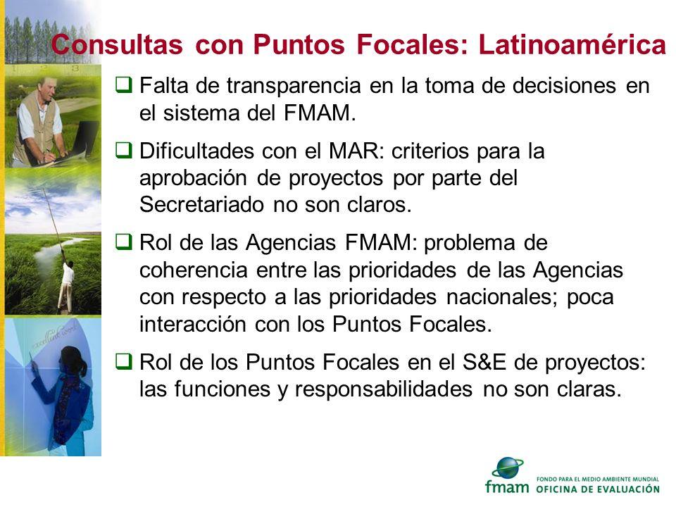 Consultas con Puntos Focales: Latinoamérica