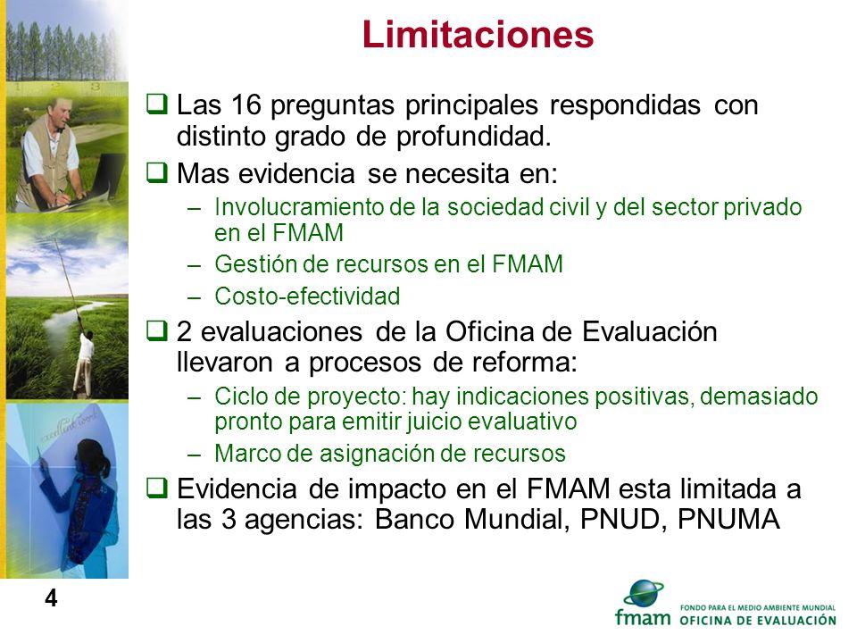 Limitaciones Las 16 preguntas principales respondidas con distinto grado de profundidad. Mas evidencia se necesita en: