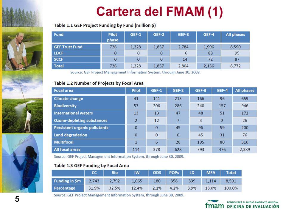 Cartera del FMAM (1)