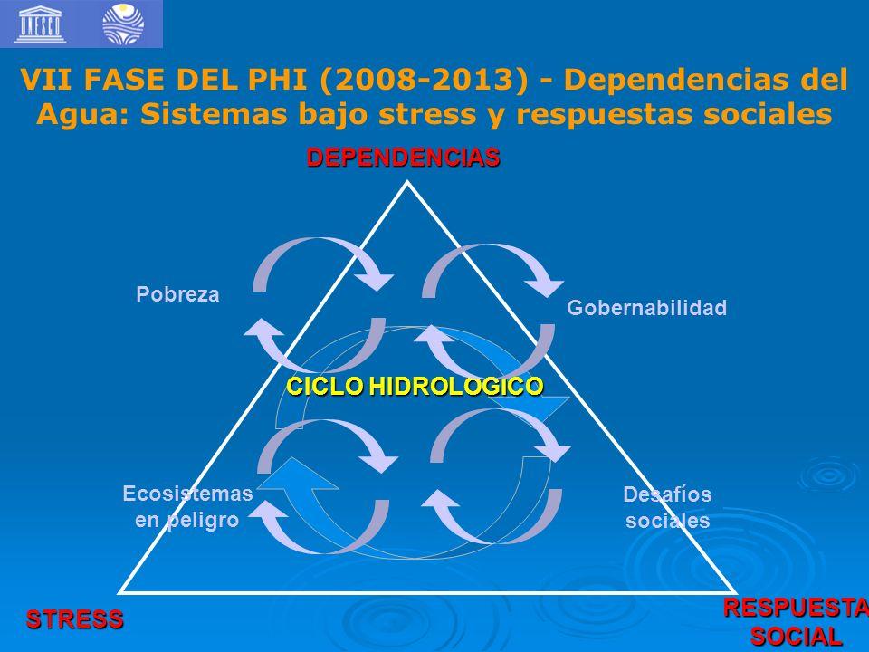 VII FASE DEL PHI (2008-2013) - Dependencias del Agua: Sistemas bajo stress y respuestas sociales