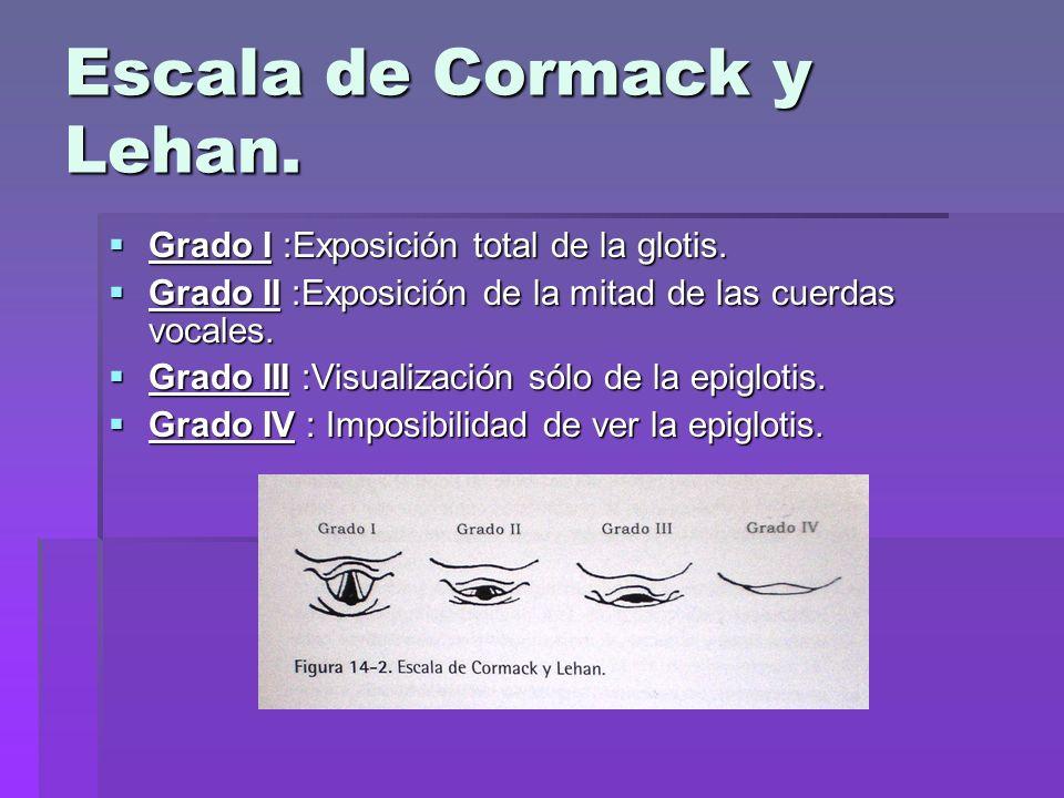Escala de Cormack y Lehan.