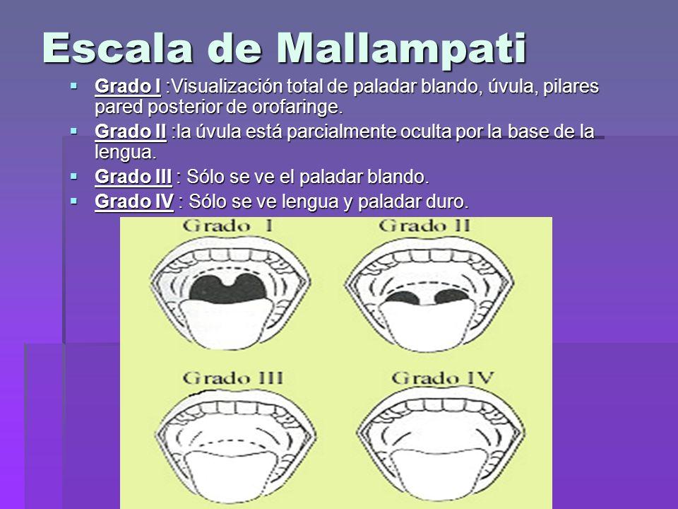 Escala de Mallampati Grado I :Visualización total de paladar blando, úvula, pilares pared posterior de orofaringe.