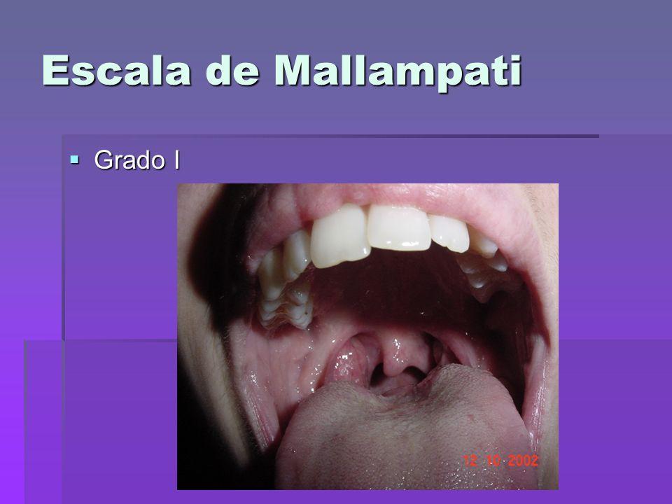 Escala de Mallampati Grado I