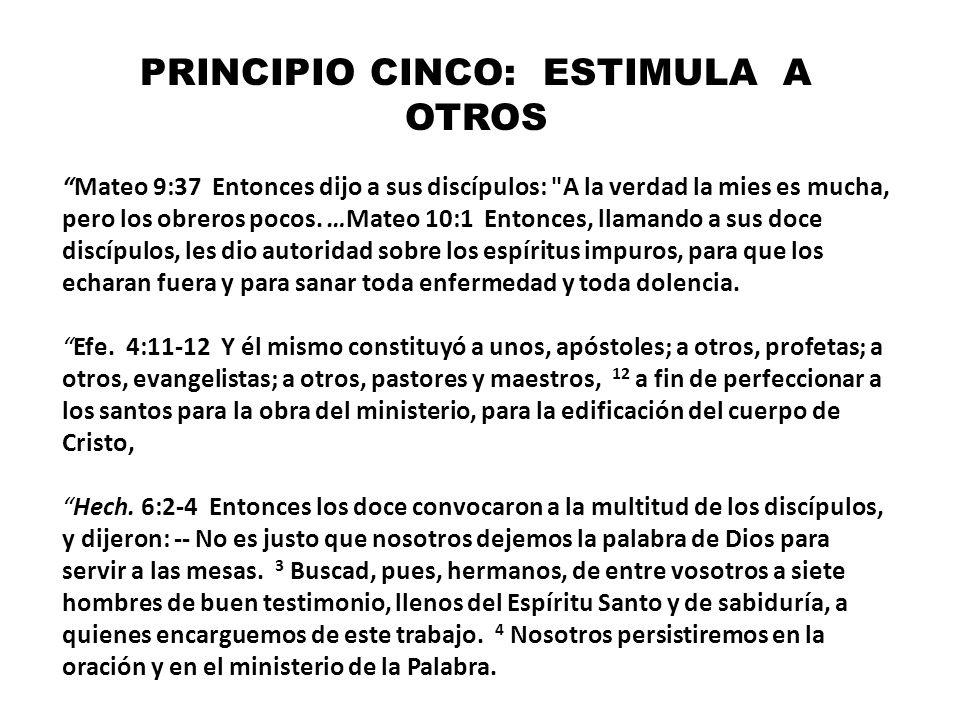 PRINCIPIO CINCO: ESTIMULA A OTROS