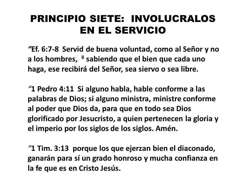 PRINCIPIO SIETE: INVOLUCRALOS EN EL SERVICIO