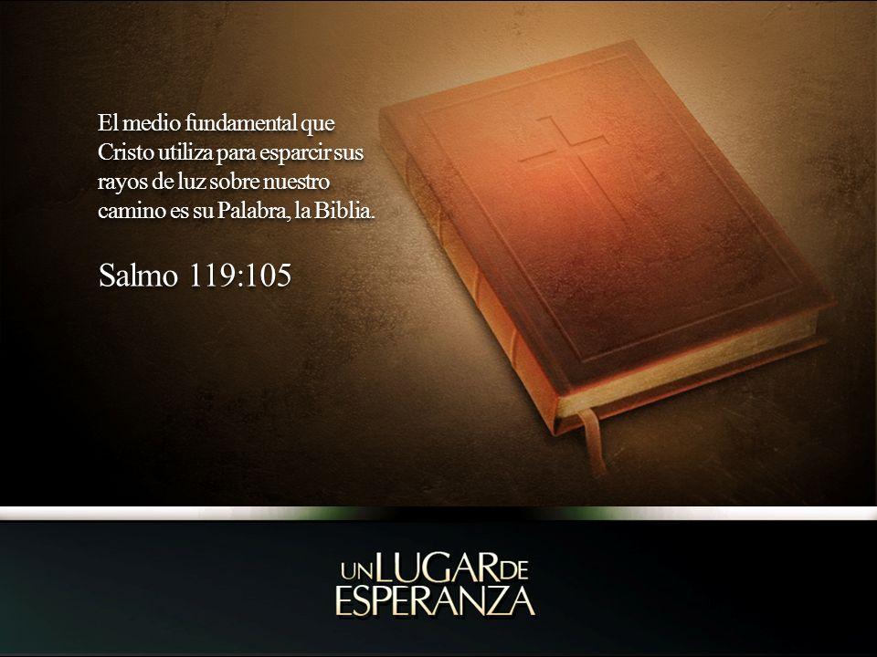 El medio fundamental que Cristo utiliza para esparcir sus rayos de luz sobre nuestro camino es su Palabra, la Biblia.