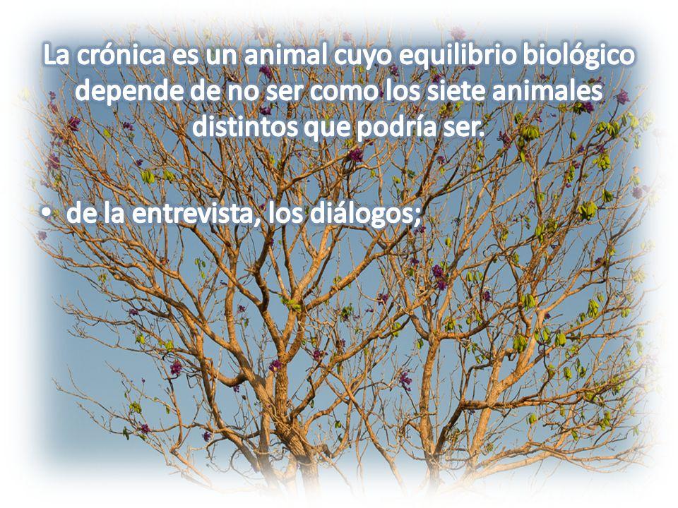 La crónica es un animal cuyo equilibrio biológico depende de no ser como los siete animales distintos que podría ser.