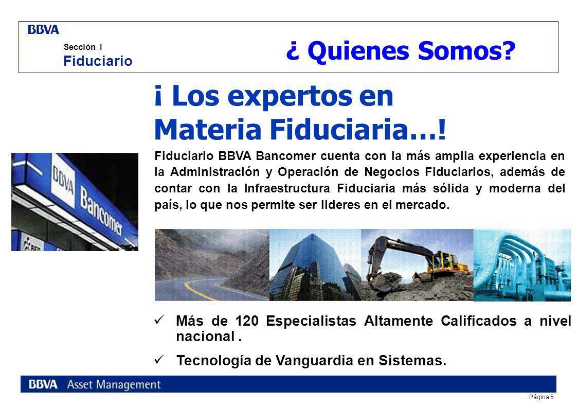 ¡ Los expertos en Materia Fiduciaria…!