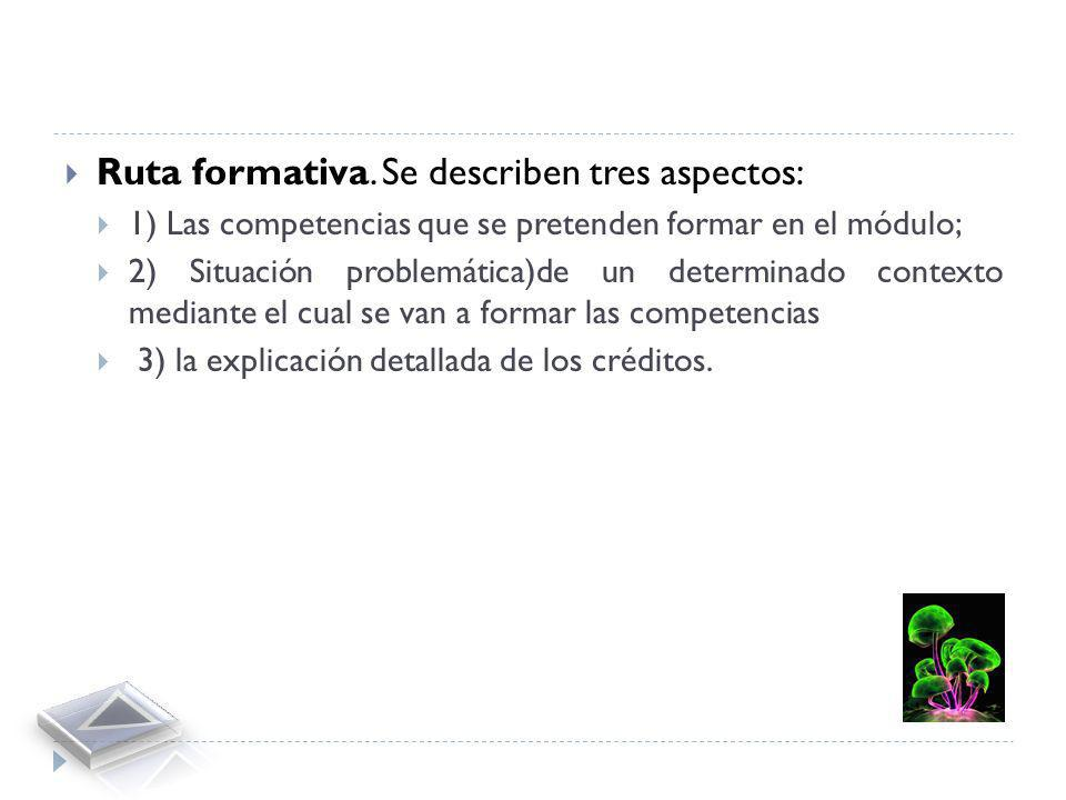Ruta formativa. Se describen tres aspectos: