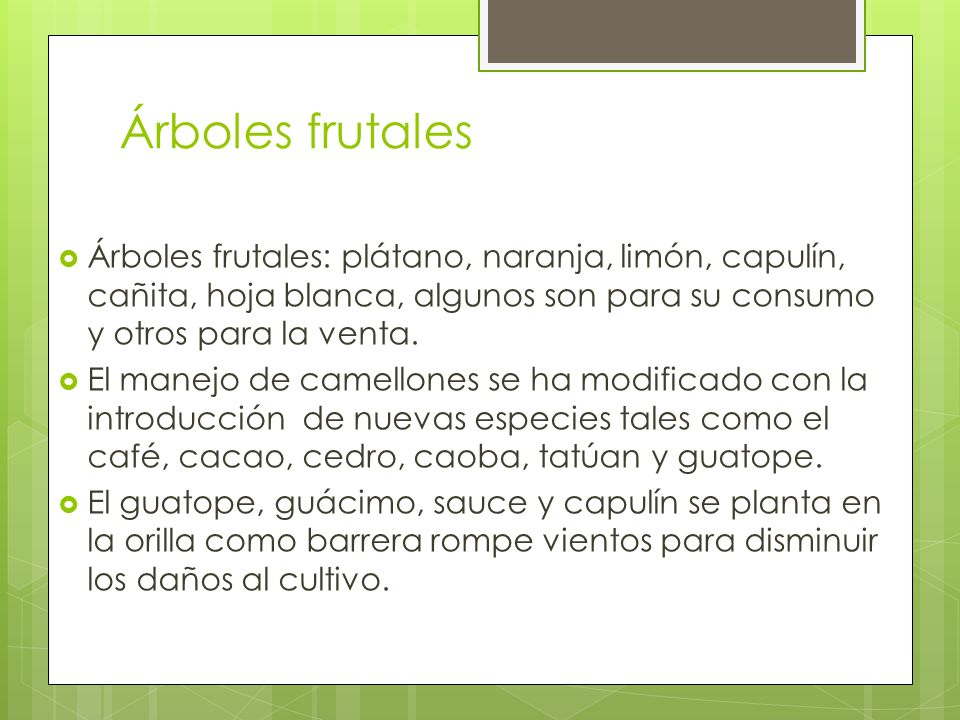 Árboles frutales Árboles frutales: plátano, naranja, limón, capulín, cañita, hoja blanca, algunos son para su consumo y otros para la venta.