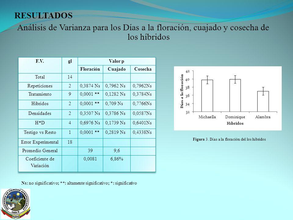 Coeficiente de Variación