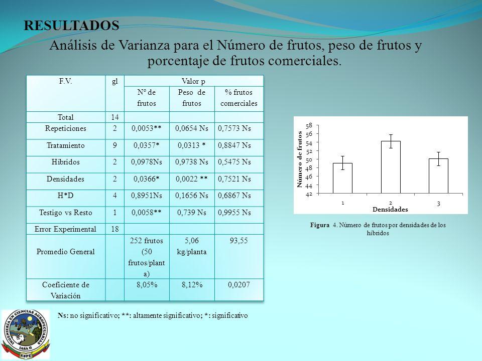 RESULTADOS Análisis de Varianza para el Número de frutos, peso de frutos y porcentaje de frutos comerciales.