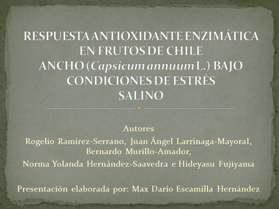 RESPUESTA ANTIOXIDANTE ENZIMÁTICA EN FRUTOS DE CHILE ANCHO (Capsicum annuum L.) BAJO CONDICIONES DE ESTRÉS SALINO
