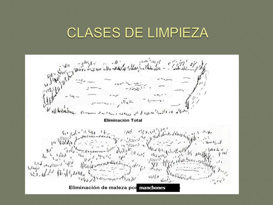 CLASES DE LIMPIEZA manchones