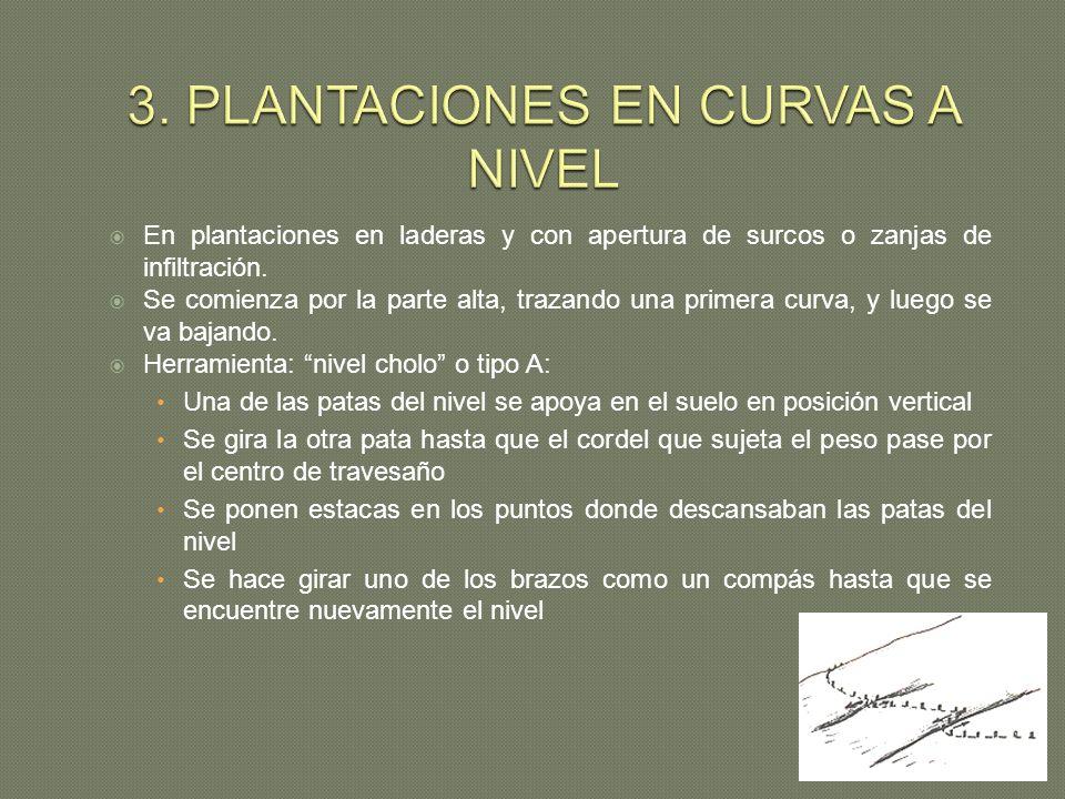 3. PLANTACIONES EN CURVAS A NIVEL