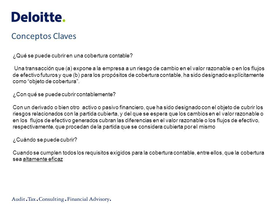 Conceptos Claves ¿Qué se puede cubrir en una cobertura contable