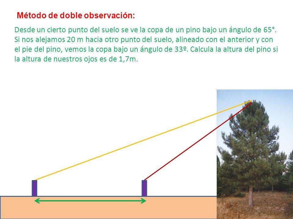 Método de doble observación: