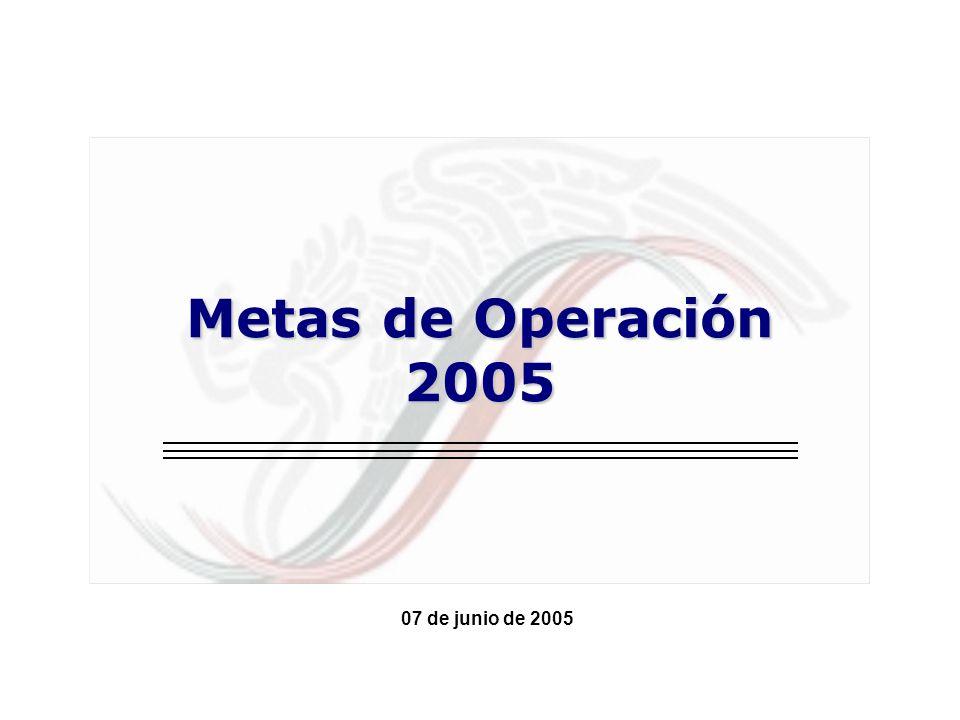 Metas de Operación 2005 07 de junio de 2005