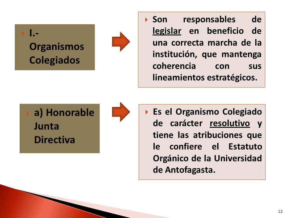 I.- Organismos Colegiados