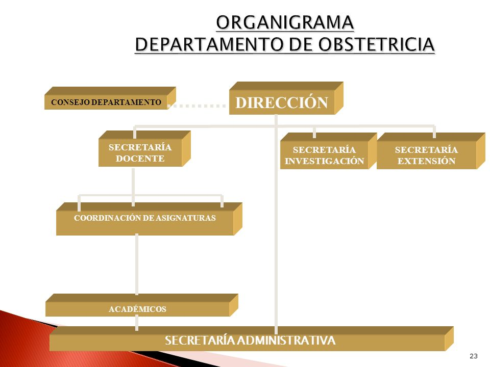 ORGANIGRAMA DEPARTAMENTO DE OBSTETRICIA
