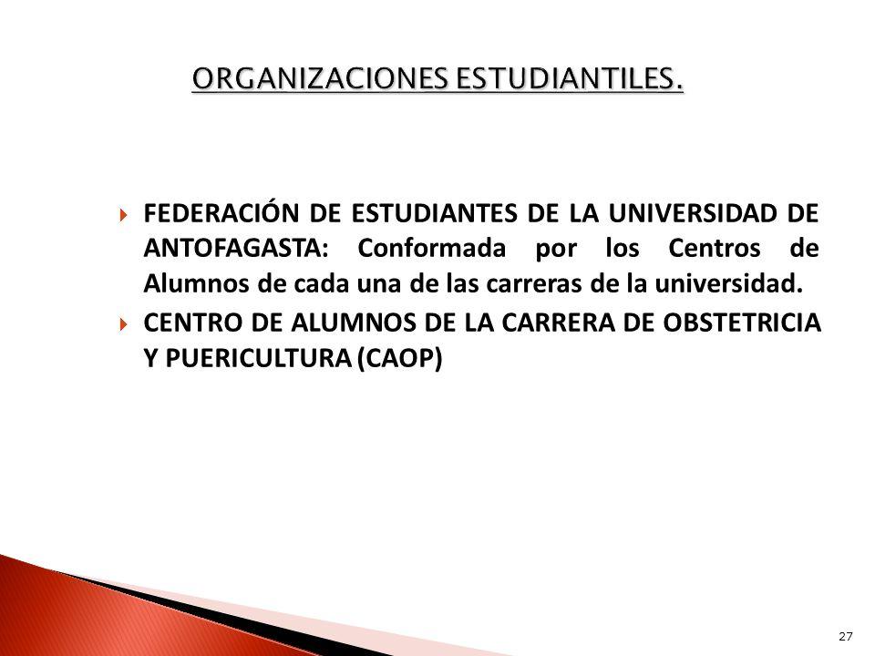 ORGANIZACIONES ESTUDIANTILES.