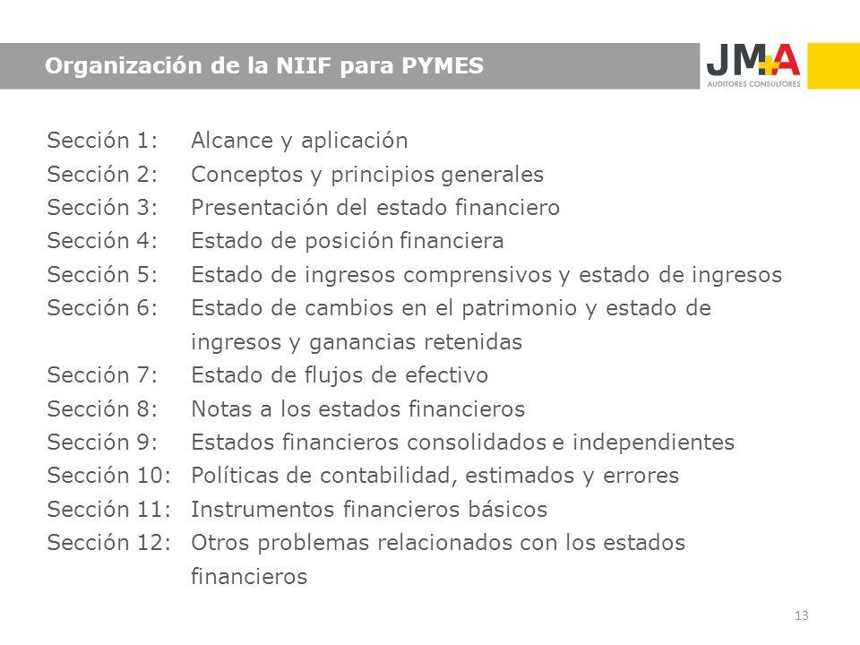 Organización de la NIIF para PYMES