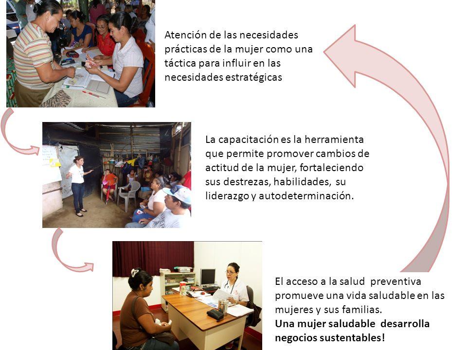 Atención de las necesidades prácticas de la mujer como una táctica para influir en las necesidades estratégicas
