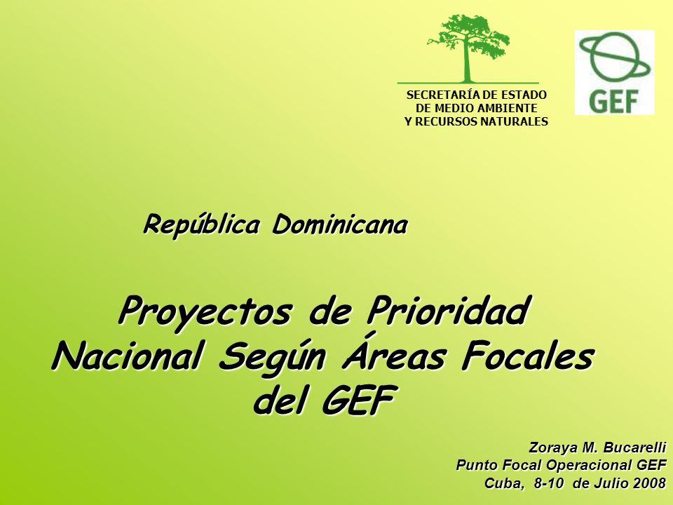 Proyectos de Prioridad Nacional Según Áreas Focales del GEF