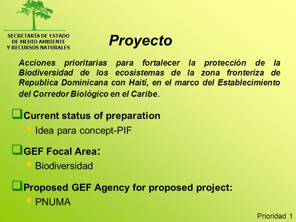 Proyecto Current status of preparation Idea para concept-PIF