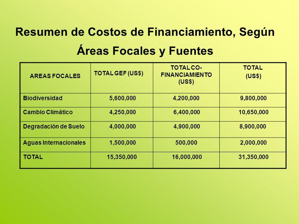 Resumen de Costos de Financiamiento, Según Áreas Focales y Fuentes