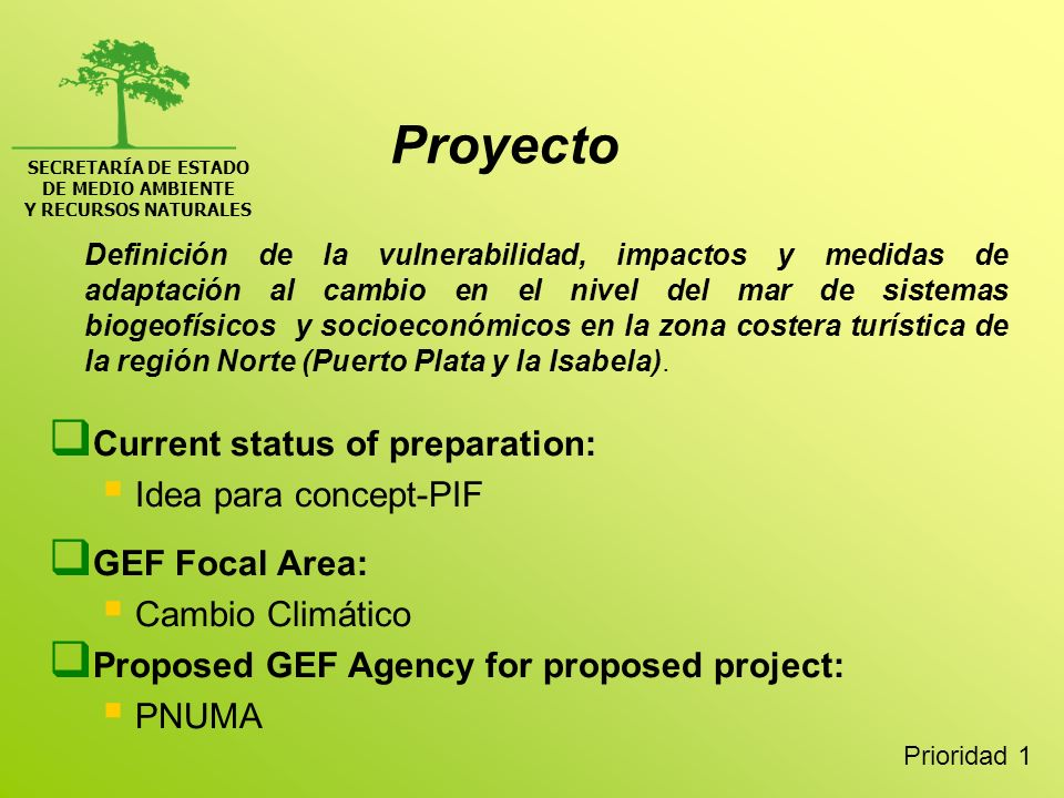 Proyecto Current status of preparation: Idea para concept-PIF