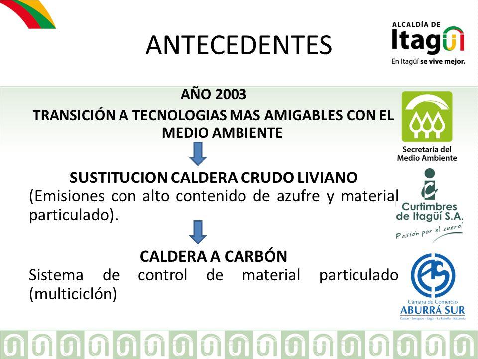 ANTECEDENTES SUSTITUCION CALDERA CRUDO LIVIANO