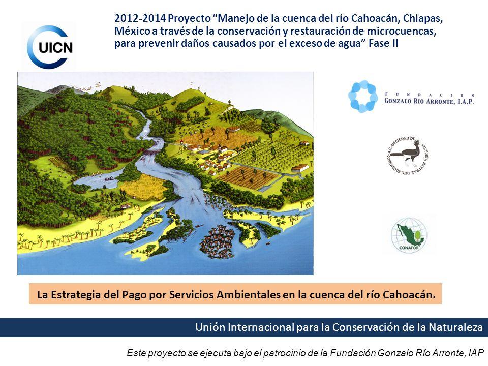 2012-2014 Proyecto Manejo de la cuenca del río Cahoacán, Chiapas, México a través de la conservación y restauración de microcuencas, para prevenir daños causados por el exceso de agua Fase II
