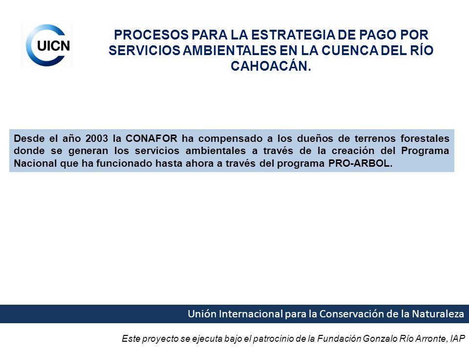 PROCESOS PARA LA ESTRATEGIA DE PAGO POR SERVICIOS AMBIENTALES EN LA CUENCA DEL RÍO CAHOACÁN.