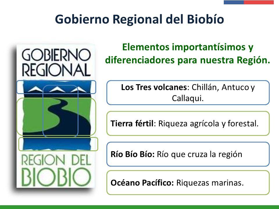 Gobierno Regional del Biobío