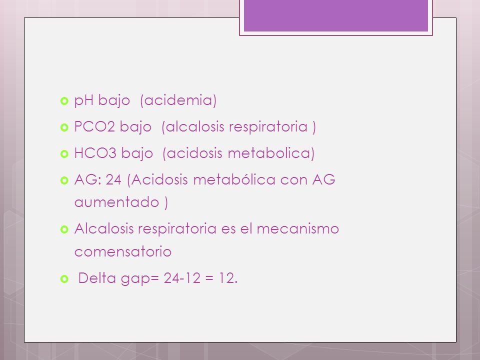 pH bajo (acidemia) PCO2 bajo (alcalosis respiratoria ) HCO3 bajo (acidosis metabolica) AG: 24 (Acidosis metabólica con AG aumentado )