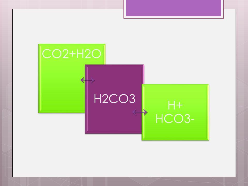 CO2+H2O H2CO3 H+ HCO3- ↔ ↔