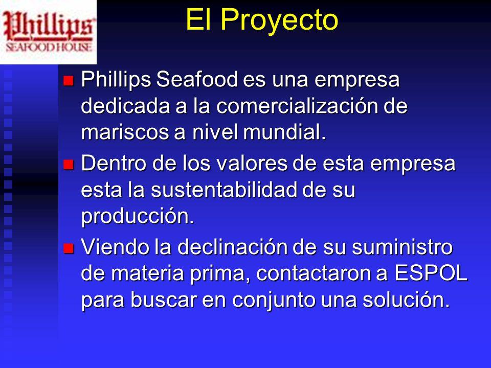 El Proyecto Phillips Seafood es una empresa dedicada a la comercialización de mariscos a nivel mundial.