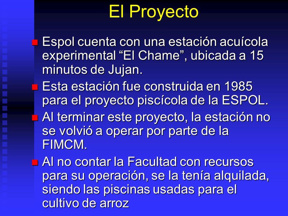 El Proyecto Espol cuenta con una estación acuícola experimental El Chame , ubicada a 15 minutos de Jujan.