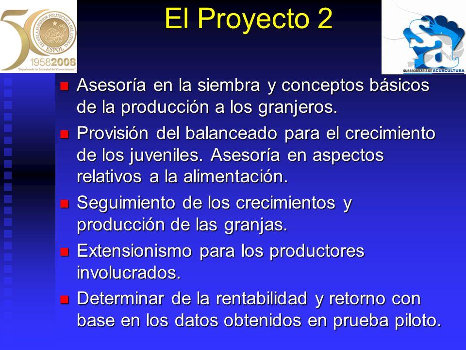 El Proyecto 2 Asesoría en la siembra y conceptos básicos de la producción a los granjeros.