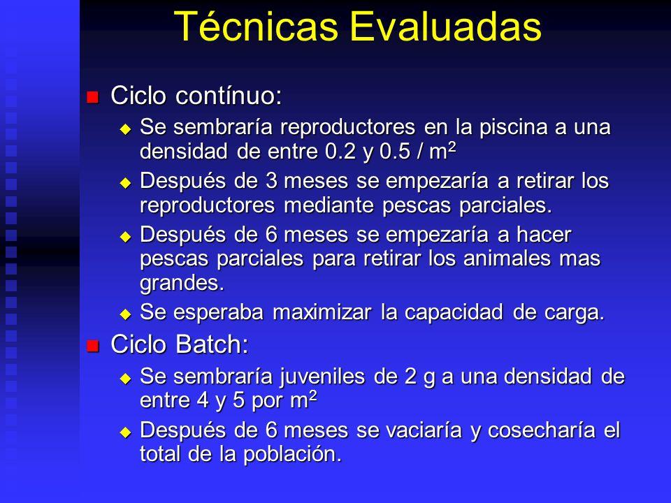 Técnicas Evaluadas Ciclo contínuo: Ciclo Batch: