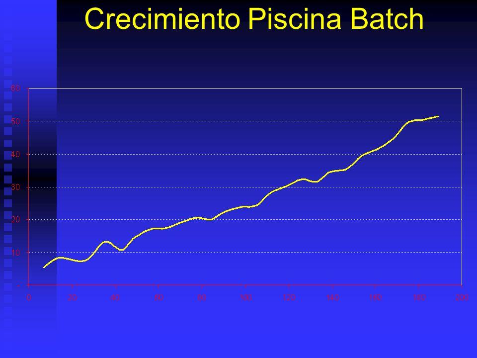 Crecimiento Piscina Batch