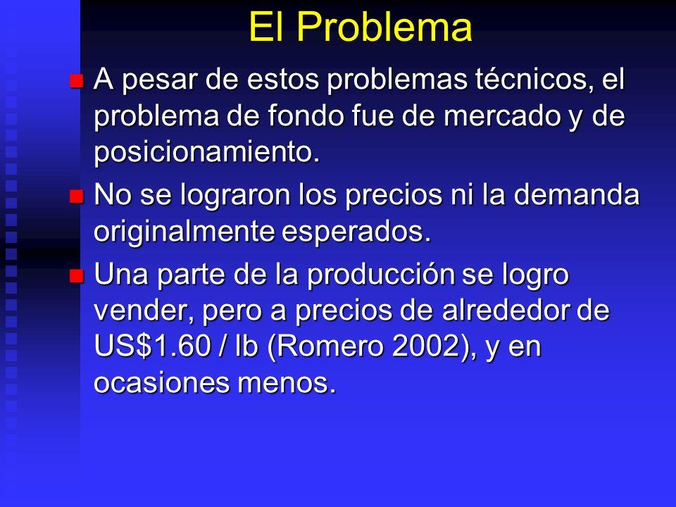 El Problema A pesar de estos problemas técnicos, el problema de fondo fue de mercado y de posicionamiento.